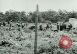 Image of German Prisoners of War United States USA, 1944, second 31 stock footage video 65675021151