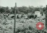 Image of German Prisoners of War United States USA, 1944, second 33 stock footage video 65675021151