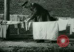 Image of German Generals imprisoned Germany, 1945, second 23 stock footage video 65675021162