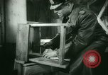 Image of German Generals imprisoned Germany, 1945, second 47 stock footage video 65675021162