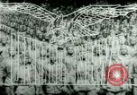 Image of American Bomber aircraft strike Berlin United Kingdom, 1944, second 12 stock footage video 65675021165