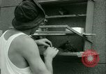 Image of Prisoner trains birds at US operated POW camp United States USA, 1944, second 14 stock footage video 65675021176