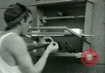 Image of Prisoner trains birds at US operated POW camp United States USA, 1944, second 16 stock footage video 65675021176