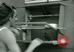 Image of Prisoner trains birds at US operated POW camp United States USA, 1944, second 21 stock footage video 65675021176