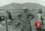 Image of German prisoners Tunisia North Africa, 1943, second 40 stock footage video 65675021181