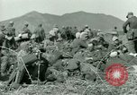 Image of German prisoners Tunisia North Africa, 1943, second 52 stock footage video 65675021181