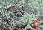 Image of Assault of hill South Vietnam, 1967, second 15 stock footage video 65675021191