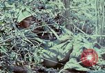 Image of Assault of hill South Vietnam, 1967, second 19 stock footage video 65675021191