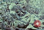 Image of Assault of hill South Vietnam, 1967, second 21 stock footage video 65675021191