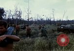 Image of 11th Armored Cavalry Regiment base camp South Vietnam, 1967, second 29 stock footage video 65675021194