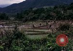 Image of 196th Light Infantry Brigade on mission Vietnam, 1968, second 24 stock footage video 65675021198