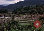 Image of 196th Light Infantry Brigade on mission Vietnam, 1968, second 29 stock footage video 65675021198
