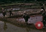 Image of 196th Light Infantry Brigade on mission Vietnam, 1968, second 33 stock footage video 65675021198