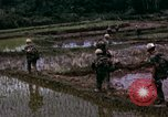 Image of 196th Light Infantry Brigade on mission Vietnam, 1968, second 35 stock footage video 65675021198