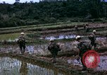 Image of 196th Light Infantry Brigade on mission Vietnam, 1968, second 37 stock footage video 65675021198