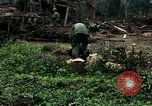 Image of US Army soldiers destroy shelled pagoda building Vietnam, 1968, second 34 stock footage video 65675021204