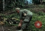 Image of US Army soldiers destroy shelled pagoda building Vietnam, 1968, second 58 stock footage video 65675021204