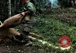 Image of US Army soldiers destroy shelled pagoda building Vietnam, 1968, second 60 stock footage video 65675021204