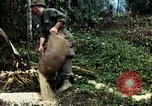 Image of US Army soldiers destroy shelled pagoda building Vietnam, 1968, second 61 stock footage video 65675021204