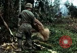 Image of US Army soldiers destroy shelled pagoda building Vietnam, 1968, second 62 stock footage video 65675021204