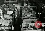 Image of vocational training Berea Kentucky United States USA, 1933, second 36 stock footage video 65675021245