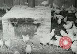 Image of Poultry farm Berea Kentucky United States USA, 1933, second 10 stock footage video 65675021269