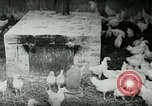 Image of Poultry farm Berea Kentucky United States USA, 1933, second 11 stock footage video 65675021269