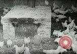 Image of Poultry farm Berea Kentucky United States USA, 1933, second 13 stock footage video 65675021269