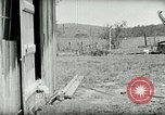 Image of Poultry farm Berea Kentucky United States USA, 1933, second 19 stock footage video 65675021269