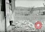 Image of Poultry farm Berea Kentucky United States USA, 1933, second 31 stock footage video 65675021269