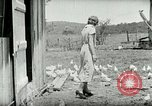 Image of Poultry farm Berea Kentucky United States USA, 1933, second 33 stock footage video 65675021269