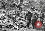 Image of 5th Marine Regiment Chateau-Thierry France, 1918, second 62 stock footage video 65675021508