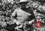 Image of 5th and 6th Marine Regiment France, 1918, second 36 stock footage video 65675021510