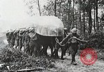 Image of Marne Operation France, 1918, second 23 stock footage video 65675021522