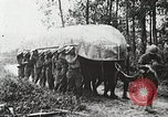 Image of Marne Operation France, 1918, second 24 stock footage video 65675021522