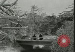 Image of Niagara Falls United States USA, 1921, second 52 stock footage video 65675021527