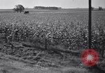 Image of government food distributed to tenant farmers Iowa United States USA, 1939, second 44 stock footage video 65675021578