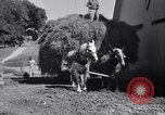 Image of government food distributed to tenant farmers Iowa United States USA, 1939, second 52 stock footage video 65675021578