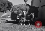 Image of government food distributed to tenant farmers Iowa United States USA, 1939, second 53 stock footage video 65675021578