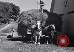 Image of government food distributed to tenant farmers Iowa United States USA, 1939, second 54 stock footage video 65675021578