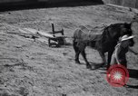 Image of government food distributed to tenant farmers Iowa United States USA, 1939, second 57 stock footage video 65675021578