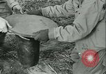 Image of Signal Corps European Theater, 1943, second 52 stock footage video 65675021722