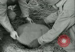 Image of Signal Corps European Theater, 1943, second 54 stock footage video 65675021722
