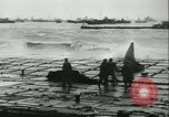 Image of D Day Normandy France, 1944, second 51 stock footage video 65675021724