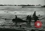Image of D Day Normandy France, 1944, second 52 stock footage video 65675021724