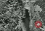 Image of World War II amphibious assault in Pacific Pacific Theater, 1944, second 28 stock footage video 65675021727