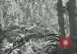 Image of World War II amphibious assault in Pacific Pacific Theater, 1944, second 48 stock footage video 65675021727