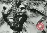 Image of World War II amphibious assault in Pacific Pacific Theater, 1944, second 50 stock footage video 65675021727