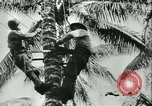 Image of World War II amphibious assault in Pacific Pacific Theater, 1944, second 51 stock footage video 65675021727
