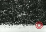 Image of Battle of France France, 1940, second 1 stock footage video 65675021752